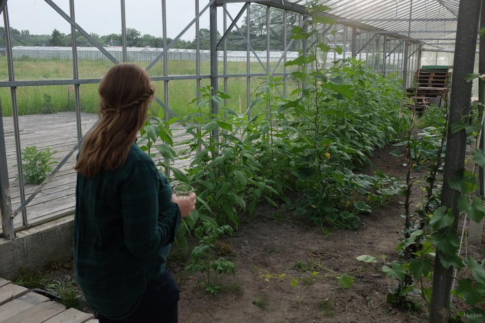 De Kas Eet en Kweekplek - brommerbios in utrecht