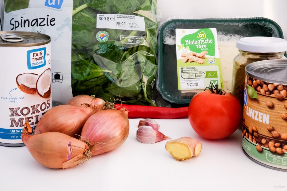 nynkek - recept linzencurry vegan - DSCF2910-160706-2