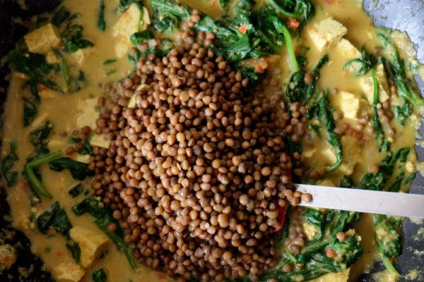 Als laatste schep je de linzen in de pan en laat deze een paar minuten mee verwarmen.