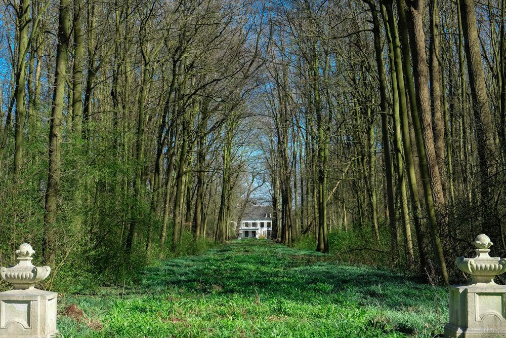 Vanaf station Lunetten loop je het bos in.