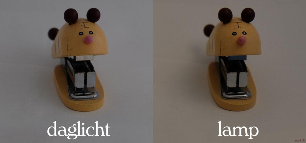 Productfotografie: daglicht vs lamplicht