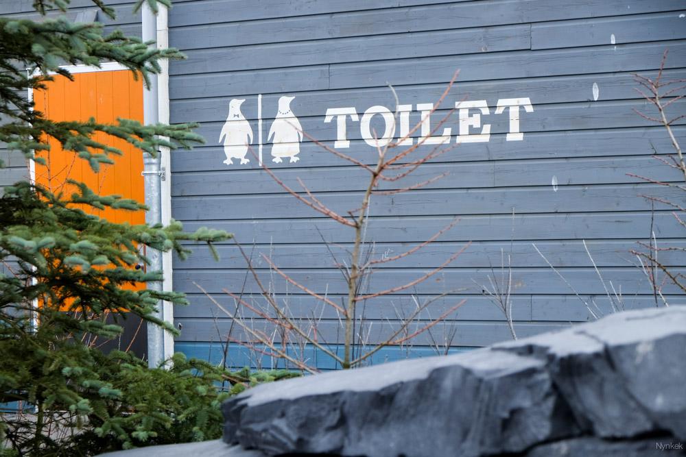 De pinguïns hadden hun eigen toilet