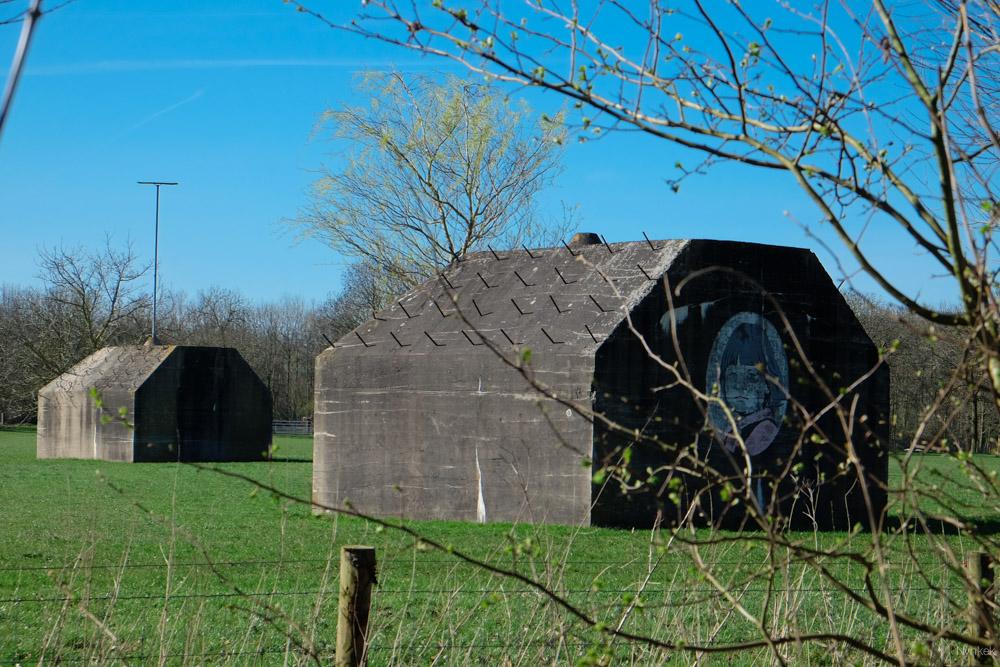 Je loopt langs de nieuwe Utrechtse Waterlinie en veel bunkers.